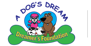 Dreamers Foundation